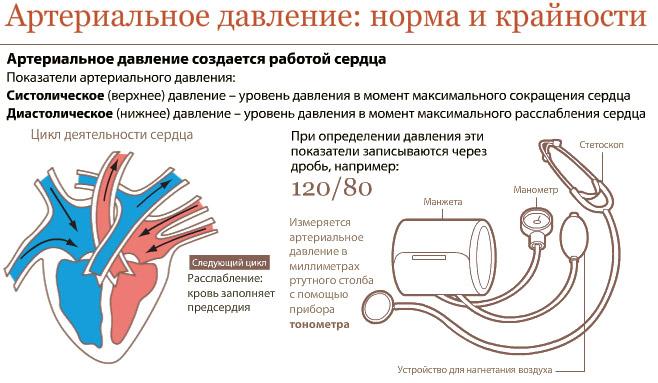 Križaljka lijeka hipertenzije