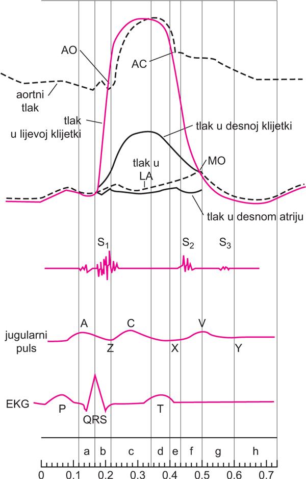 ekg srca hipertenzije