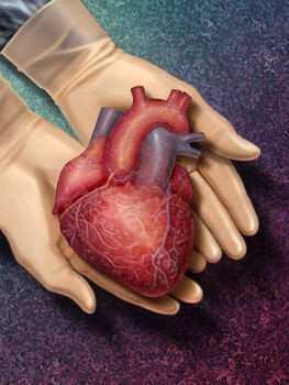 trimetazidin limenke hipertenzija