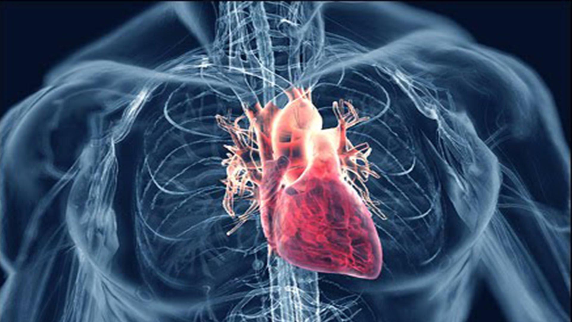 sakrij hipertenzija