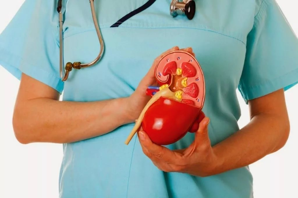 nefrogena hipertenzija icd 10 kardio denas hipertenzija