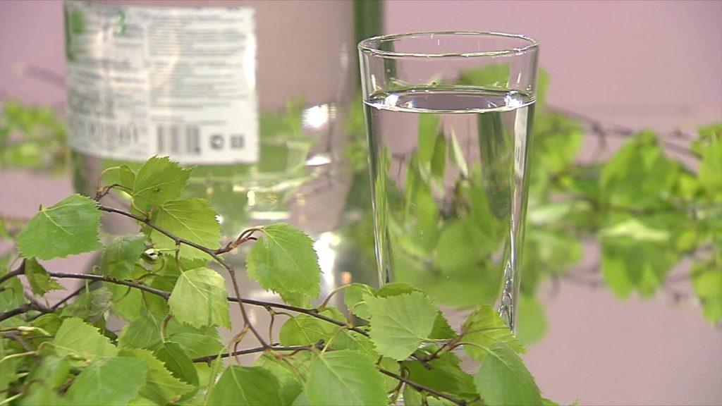Dar prirode za zdravlje i vitalnost: sok od breze - imcites.com