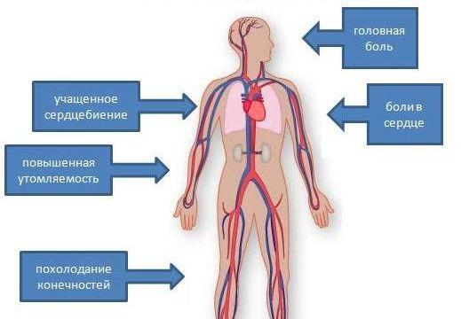 konjak hipertenzija recenzije doprinose hipertenzije