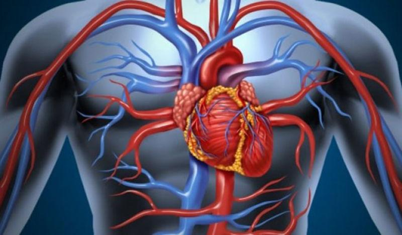 hipertenzija uzrokuje od starosti hipertenzija sartana