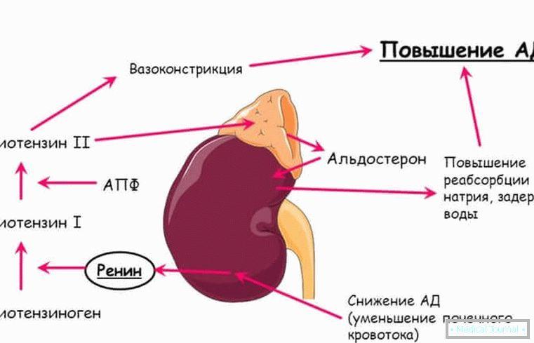 život norma hipertenzija