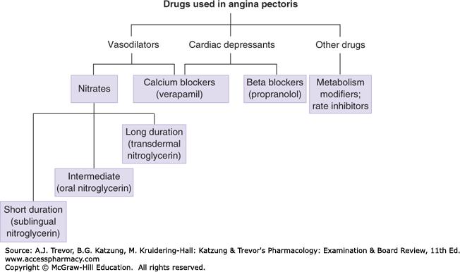 razlikuje od hipertenzije angine pektoris