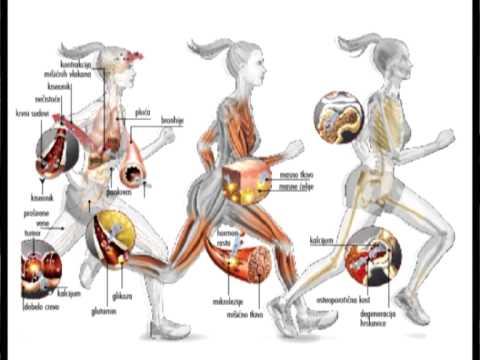 hipertenzija udžbenik valemidin i hipertenzija