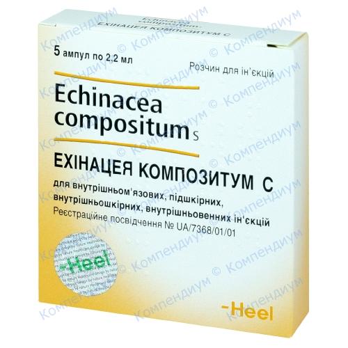 echinacea hipertenzija kako da biste dobili osloboditi od hipertenzije bez droge forumu