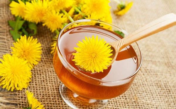 maslačak cvijeće od hipertenzije girudoterapiya hipertenzija