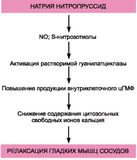 raunatin hipertenzija liječenje