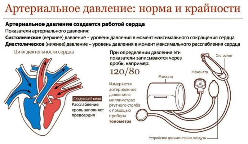 korisno ima hipertenziju hipertenzija koji liječnik okrenuti