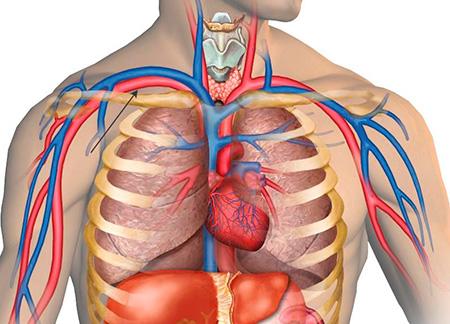 medicinska enciklopedija hipertenzija