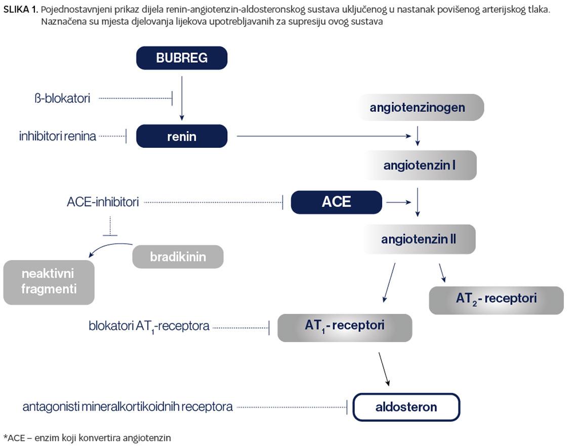 Što nam donosi fiksna trojna kombinacija u liječenju arterijske hipertenzije?