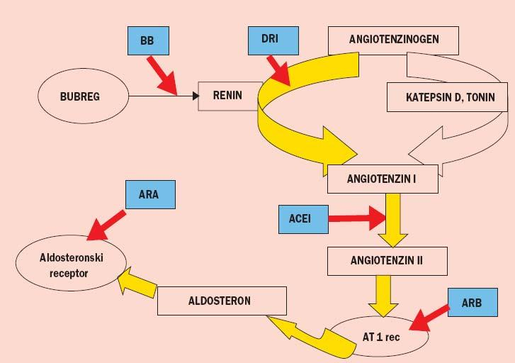 prevencija hipertenzije valjka diuretici za hipertenziju i dijabetesa